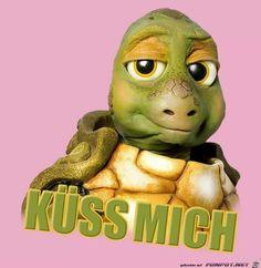 lustiges Bild 'Kuess mich.jpg'- Eine von 60113 Dateien in der Kategorie 'Lustiges' auf FUNPOT.