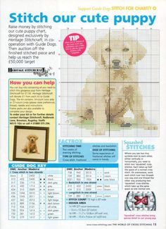 Labrador puppy free cross stitch pattern