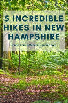 5 Incredible Hikes in New Hampshire babies flight hotel restaurant destinations ideas tips Hiking Tips, Camping And Hiking, Backpacking, Hiking Usa, Rv Camping, New Hampshire, Travel Guides, Travel Tips, Travel Destinations