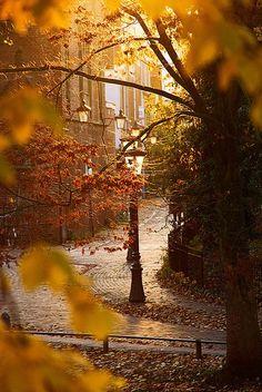 Gorgeous Autumn Photo