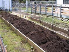 garden techniqu, victory garden, victori garden, rais bed, grow potato, box bed
