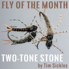 Fly of the Month-May 2017 | J Stockard Fly Fishing Gear, Gone Fishing, Best Fishing, Fishing Tips, Fishing Tackle, Fishing Stuff, Nymph Fly Patterns, Fly Tying Patterns, Fly Craft