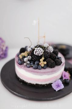 Frozen Berry Oreo cheesecake and blackberry yogurt ice cream
