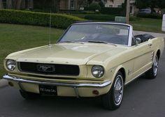 Ford Mustang Convertible 289 V 8 3K MI   eBay