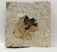 """Hallie LeBlanc Studio 10x10"""" Handmade papers on panel"""