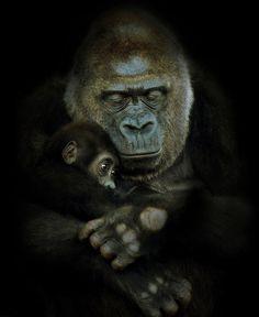 El amor de una madre es completamente un mundo diferente #amor/love