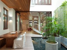 Modern House with pond, potted vertical climbing plants. You'd have to live in a certain climate for this to work.