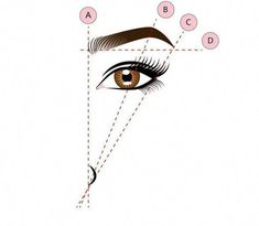 When shaping, use your tweezers or a pencil to identify the heads and tails of your eyebrows. To figure out where your arch lies, line it up diagonally from your nostril to the center of your eye. Eyebrow Shaper, Eyebrow Tinting, Brow Shaping, Eyebrow Pencil, Eyebrow Makeup, Makeup Kit, Eyebrow Tips, Makeup Ideas, Eyebrow Wax