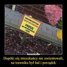 Polish Memes, Bts Memes, Ale, Good Things, Humor, Funny, Universe, Pug, Ale Beer