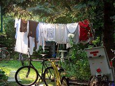 Clothesline & Bikes by Professor Bop, via Flickr