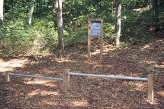 WHOI Fitness Trail, Station 10