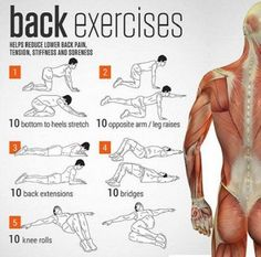 If you tend to sit for longer than 2 hours during the day or are otherwise prone to back pain and aches, today's stretching routine makes a lot of sense. Some of the symptoms of prolonged sitting are reduced spinal flexibility and fragile back muscles, and ignoring them can lead to bad posture and increased …