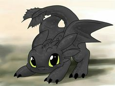 This is baby Toothless! He is so cute of u ask me. I am a total fan of How to Train Your Dragon so this was an epic score for me.
