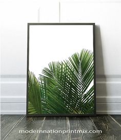 Check out this item in my Etsy shop https://www.etsy.com/ca/listing/478188364/palm-tree-art-print-palm-tree-digital