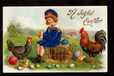 AMB boy in silk sailor suit chickens easter postcard
