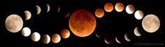 Photographer John Ashley created this striking mosaic of the blood moon phases during a total lunar eclipse on April 15, 2014 as seen from Kila in northwestern Montana....