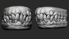 Zbrush Models, Helmet Head, 3d Assets, 3d Character, Creature Design, Sculpting, Teeth, Templates, Mouths
