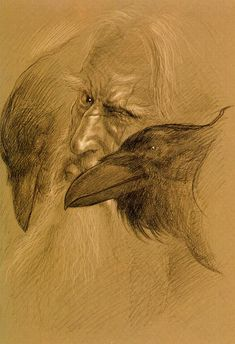 "Odin, by the amazing John Howe - Hugin and Munin (from 'Beowulf"" illustrations) Thor, Les Runes, Quoth The Raven, 4 Tattoo, Viking Art, Viking Life, Beowulf, Crows Ravens, Norse Vikings"