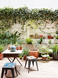 Binnenplaats tuin in Barcelona Inrichtinghuis com is part of Patio interior - Modify your meta description by editing it right here Garden Deco, Small Gardens, Outdoor Gardens, Patio Design, Garden Design, Outdoor Rooms, Outdoor Living, Barcelona Apartment, Garden Inspiration
