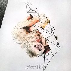 Sloth tattoo watercolor dotwork rib