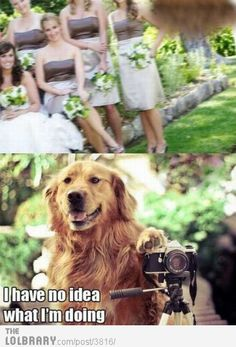 The importance of hiring a good wedding photographer.