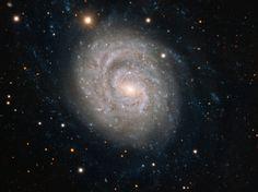 Este incrível wallpaper do espaço feito pelo Very Large Telescope do ESO, no Observatório de Paranal, no Chile, mostra NGC 1637, uma galáxia espiral localizada a cerca de 35 milhões de anos-luz de distância na constelação de Eridanus (o rio).