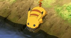 15 Pokemon GIFs That True Fans Will Love - Pokemon Memes and Funny Pics - Pokestache
