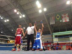 Boxing boxe luta pela paz