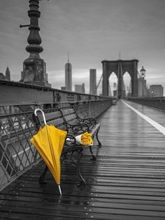 Yellow umbrella and bunch of roses on bench on pedestrian pathway Brooklyn bridge New York Canvas Art - Assaf Frank x Umbrella Photography, Yellow Photography, Glitter Photography, Splash Photography, Black And White Photography, Photography Tricks, Digital Photography, Creative Photography, Color Pop