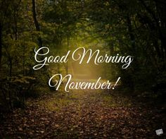 When the of the month has arrived, share a warm morning pic with the ones you love and care about and welcome a lovely new month. Welcome November, Happy November, Hello November, Good Morning Texts, Good Morning Good Night, November Images, Best Birthday Wishes, Morning Inspirational Quotes, New Month