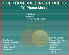 Ronald E. Warner's Tri-phase Approach for Solution-focused Therapy   www.sfbta.org/PDFs/2007/fileDownloader.asp?fname=warner.pdf
