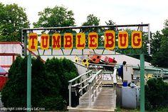 The Tumble Bug