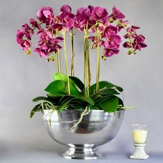 Purple Orchids in silver bowl Orchid Arrangements, Artificial Flower Arrangements, Artificial Orchids, Orchid Plants, Purple Orchids, Candle Centerpieces, Bowl, Door Wreaths, Indoor Plants