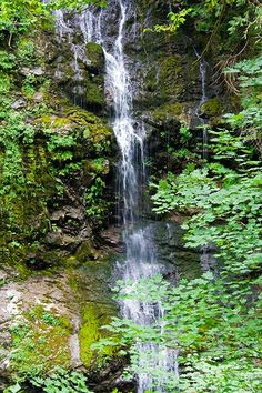 6 Kid friendly waterfall hikes for Seattle kids and families