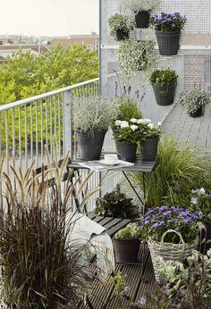 kleiner balkon ideen skandinavisch gräser tisch pflanzen vertikal