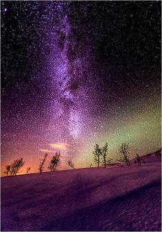 Beaautiful purple stars in a lovely sky.