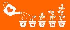 Grow-Your-Followers-300x130 Grow-Your-Followers-300x130