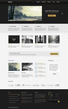 Spicy - WIP Portfolip Theme by ~srcn-srcn #webdesign #trends