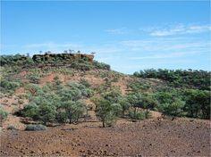 Lark Quarry, Winton, Queensland, Australia