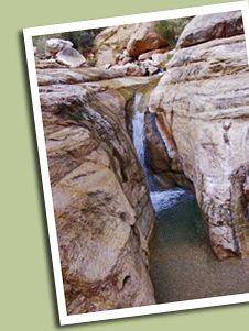 Grand Canyon Trust Volunteers Program