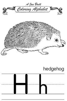 Best Coloring: Jan brett coloring pages hedgehogs - Amazing Coloring sheets - Brett's earliest book in the Library of Congress online catalog was published by Atheneum Books in 1978 under her married name: Woodland Crossings, wi. Alphabet Coloring Pages, Printable Coloring Pages, Coloring Sheets, Wild Creatures, Woodland Creatures, Jan Brett, Author Studies, Realistic Drawings, Library Of Congress