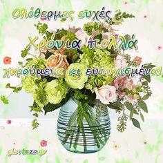 Κάρτες Με Ευχές Γενεθλίων Και Ονομαστικής Εορτής - giortazo Happy Birthday, Plants, Funny, Happy Brithday, Urari La Multi Ani, Happy Birthday Funny, Funny Parenting, Plant, Hilarious