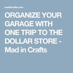 ORGANIZE YOUR GARAGE WITH ONE TRIP TO THE DOLLAR STORE - Mad in Crafts