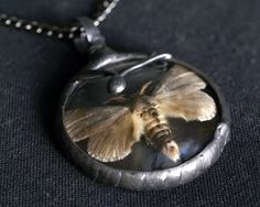 moth necklace, night butterfly, real insect, terrarium necklace, OOAK, handmade by pentaxPL on Etsy