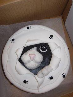 Gato saliendo de la torta