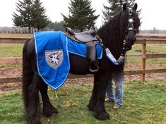 Blue Dragon Hunter Horse Costume - Medieval Barding Costume - Equine Jousting Costume for any size equine Medieval Horse, Medieval Knight, Blue Dragon, White Dragon, Horses And Dogs, Show Horses, Hunter Horse, Mounted Archery, Dragon Hunters