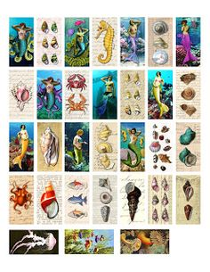 Free domino-sized sea life collage from The Sum Of All Crafts