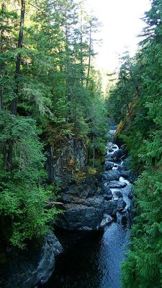 Vancouver Island.I want to visit here one day.Please check out my website thanks. www.photopix.co.nz