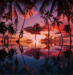 Beautiful Islands, Beautiful World, Sunset Photography, Travel Photography, Our Planet Earth, Beautiful Flowers Wallpapers, Sunset Pictures, Sunset Pics, Resort Spa