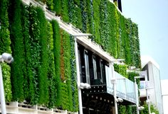 USA Pavilion #Expo2015 #Milan #WorldsFair Great shot of the green wall. Those gorgeous plants are growing in ZipGrow towers! You can get your own at zipgrow.com